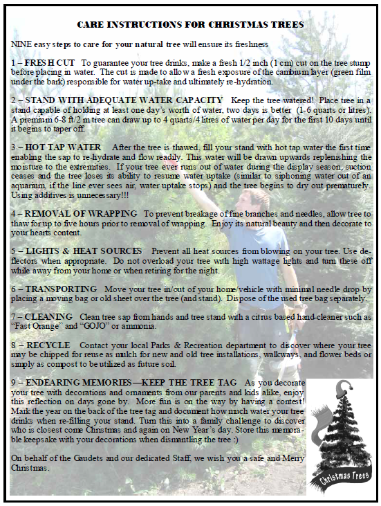 Download  instructions for christmas tree care